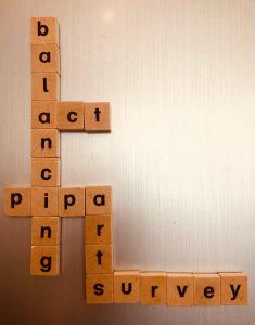 PIPABalancingActSurvey-1-e1529067726908